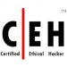 Certified Ethical Hacker Partner